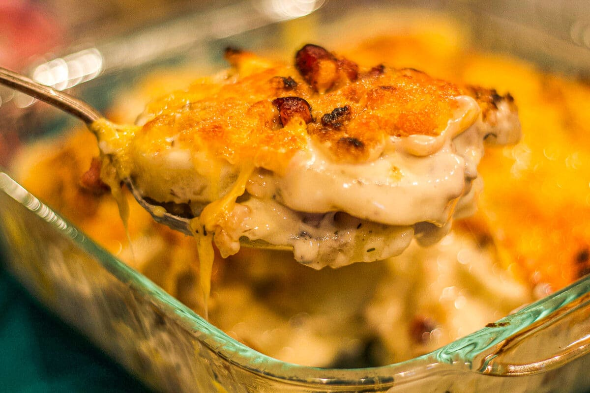 scalloped potatoes being served